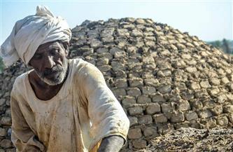 يعتلي السقالات وعمره 60 سنة.. حكاية رجب الدكاوى مع «قباب الصعيد» | صور