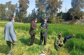 سكرتير عام محافظة أسيوط يتفقد مزارع مشروع الثروة الحيوانية | صور