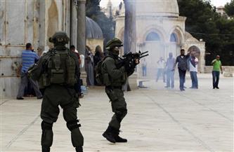 فلسطين تطالب بحماية المقدسات واتخاذ الإجراءات اللازمة ضد انتهاكات الاحتلال الإسرائيلي