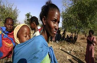 """""""الغذاء العالمي"""" يطلب تمويلا لمواجهة الجوع بإقليم تيجراي الإثيوبي"""
