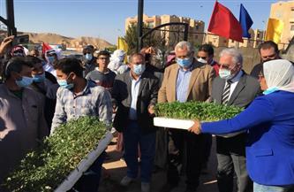 """وزير الزراعة ومحافظ جنوب سيناء يفتتحان وحدة """"بحوث الصحراء"""" بالطور  صور"""