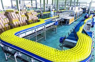 «الصناعة الوطنية» تقود قاطرة التنمية الاقتصادية المستدامة في مصر| انفوجراف