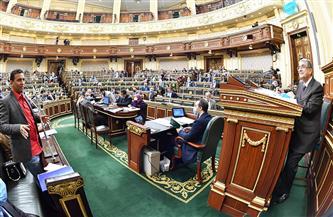 برلماني: ارتفاع نسبة الصرف الصحي بالقرى إلى 38% خلال 6 سنوات | فيديو