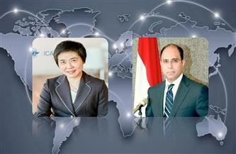 سفير مصر في كندا يناقش تأثير «كورونا» على حركة الطيران المدني العالمية مع سكرتير عام «الإيكاو»