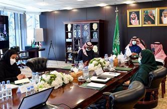 """""""الإسكوا"""" و""""إعمار اليمن"""" يعقدان اجتماعا مرئيا مع الحكومة اليمنية   صور"""
