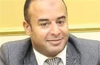 """أحمد تيسير:  """"تطوير الريف المصرى"""" فرصة لمصانع الأدوات الصحية لزيادة جودة منتجاتها"""
