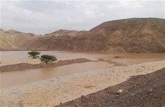 رئيس قطاع المياه الجوفية يكشف لـ«بوابة الأهرام» أعداد منشآت الحماية من أخطار السيول وحصاد الأمطار بجنوب سيناء