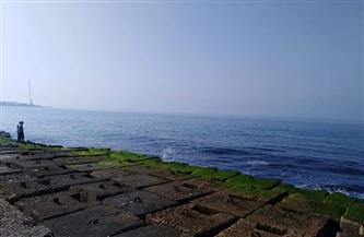 هدأت الرياح وسطعت الشمس.. استقرار الأحوال الجوية في الإسكندرية  صور