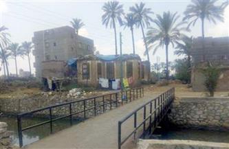 تطوير قرية أولاد صبور في الدقهلية بتكلفة 26 مليون جنيه ضمن مبادرة «حياة كريمة»