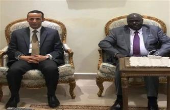 سفير مصر في جوبا يبحث سبل التعاون مع الحاكم الجديد لولاية أعالي النيل
