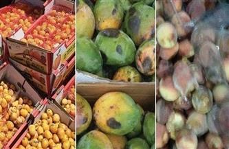 ضبط 22 طن فاكهة فاسدة بالإسكندرية