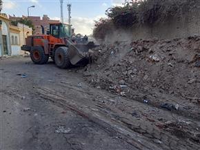 الانتهاء من رفع 600 طن تراكمات تاريخية من مقابر عوارة بطنطا | صور