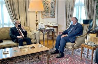 وزير الخارجية لنظيره اللبنانى: تشكيل حكومة كفاءات وطنية ضرورة لتجاوز الأزمة | صور