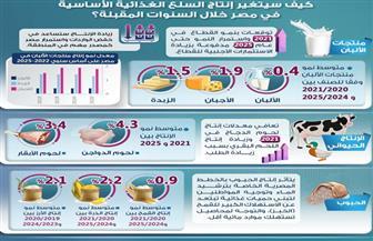 كيف سيتغير إنتاج السلع الغذائية الأساسية في مصر خلال السنوات المقبلة؟| إنفوجرافيك