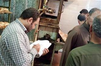 تحرير 293 محضرا تموينيا لمحال ومخابز مخالفة في الإسكندرية
