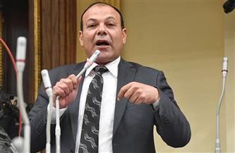 برلماني لوزيرة التخطيط: ميزانية محافظة الشرقية لا تكفي