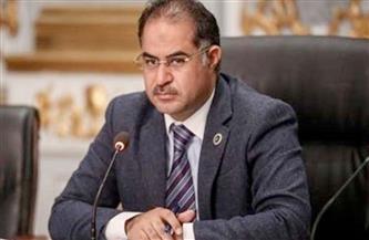"""رئيس """"برلمانية الوفد"""": الحكومة تلاحقنا بأعباء وقوانين تجعل المواطن لا يشعر بما يقوم به الرئيس من إصلاح"""