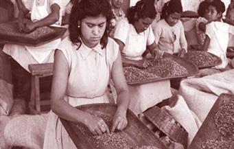 «أرض القهوة».. قصة الإمبراطورية السوداء بين الرأسمالية والاشتراكية