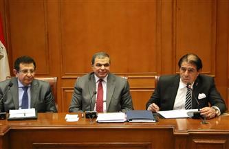 """""""سعفان"""" في البرلمان: استرداد مليار و404 مليون جنيه مستحقات للعمال المصريين بالخارج"""