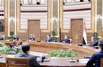 الرئيس السيسي يؤكد حرص مصر على جذب الاستثمارات الأجنبية المباشرة في مجال توليد الطاقة الجديدة والمتجددة