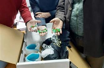 جمارك الطرود البريدية بالقاهرة تحبط تهريب أمبولات زيت الماريجوانا المخدرة | صور