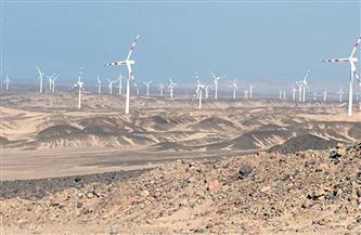 الشركة المنفذة لمشروع غرب بكر لطاقة الرياح برأس غارب تحتفل بمليون ساعة عمل دون إصابات