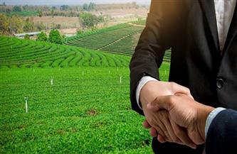 أسباب عزوف صغار المزارعين عن الاستثمار بالقطاع الزراعى