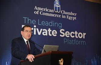 الملا: قطاع البترول والغاز ساهم في جذب ٩٠% من تدفقات الاستثمار الأجنبي المباشر إلى مصر |صور