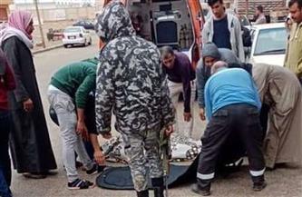 مصرع سائق نقل حاول تفادي مطب وإصابة 2 بطريق ميت غمر- أجا