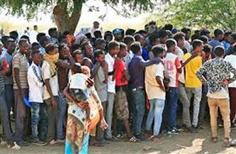 75 ألف لاجئ إثيوبي في السودان خلال خمسة أشهر