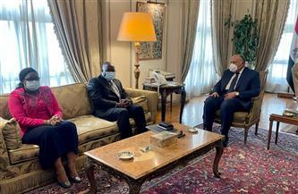 سامح شكري ونظيره الغيني يبحثان دفع التعاون الثنائي ومستجدات القضايا الإفريقية