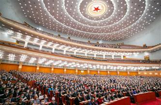 تعليق: إدراك حيوية الديمقراطية ذات الخصائص الصينية