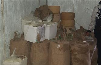 ضبط 9 أطنان ملح وإعدام عشرات الكيلوجرامات من الجبن في دمياط | صور