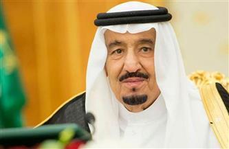 السعودية تجدد دعمها لجهود حل الأزمة في سوريا