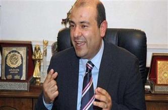 خالد حنفي: القطاع الخاص العربي يساهم بـ80% من الناتج المحلي