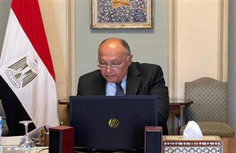 وزير الخارجية يناقش عمليات حفظ السلام في إفريقيا باجتماع مجلس السلم والأمن | صور