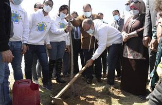 انطلاق فعاليات زراعة 1000 شجرة بمراكز وأحياء أسيوط |صور
