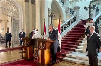 اتفاق مصري سوداني على ضرورة تحرك دبلوماسي إفريقي لمواجهة مخاطر سد النهضة والعودة إلى المفاوضات