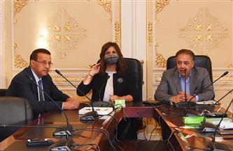 وزيرة الهجرة تكشف جهود المصريين بإفريقيا أمام النواب | صور