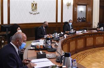 الحكومة: خطة تنويع النقد الأجنبي تستهدف إعطاء الأولوية للشركات الوطنية لتنفيذ الأعمال