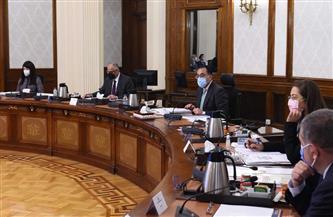 الحكومة توافق على تحويل المجموعة المصرية للمحطات المتعددة للعمل بنظام المناطق الحرة