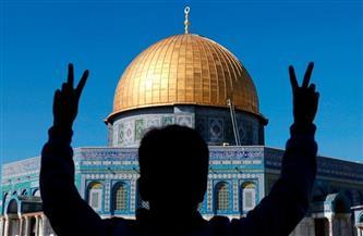 """""""هيئة الأسرى"""" الفلسطينية: 12 أمًا أسيرة يعانين مرارة الحرمان من الأبناء بسجون الاحتلال"""