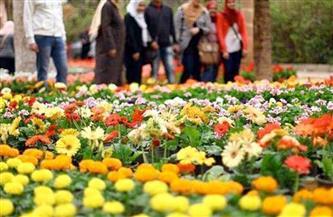 """بعد انتهاء الشتاء وبدء الربيع.. تعرف على أبرز ملامح """"شهر الزهور"""""""