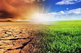 التغيرات المناخية تهدد الأمن الغذائي العالمي.. وخبراء: 5 خطوات لإنقاذ المحاصيل من تأثير تقلبات الجو