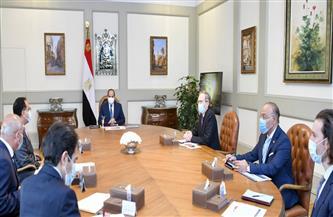 """الرئيس السيسي يستعرض مع رئيس «ألستوم» أوجه التعاون بمجالي """"السكك الحديدية"""" و""""الأنفاق"""""""