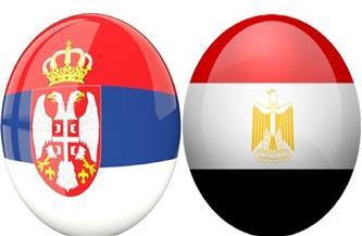 رابطة الشباب بجمعية الصداقة الصربية المصرية تطلق فيديو للسفراء العرب ليوم الصداقة مع صربيا فيديو