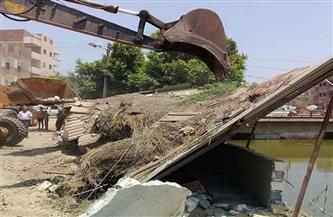 ضبط 7 منشآت صناعية مخالفة وتحرير 48 قضية تلويث نهر النيل بحملات بيئية