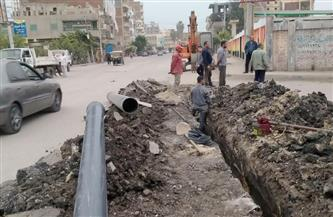 إزالة 11 حالة تعد على نهر النيل واستكمال توصيل الغاز بطريق فوة - دسوق   صور