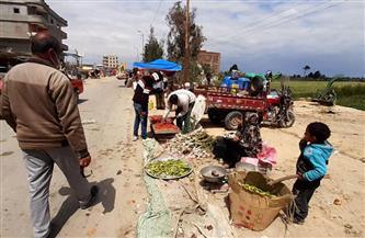 فض سوق بنجر السكر الشعبي بالإسكندرية لمواجهة كورونا | صور