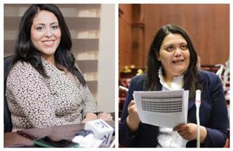 نواب التنسيقية يتقدمون ببيانات عاجلة في مجلس النواب إلى وزيري التنمية المحلية والنقل |صور